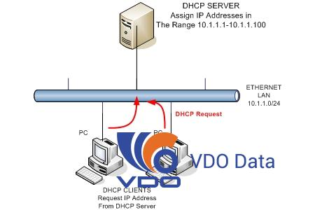 may-chu-dhcp-dhcp-server